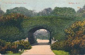 Buffalo NY, New York - Ivy Arch on Bridge in Delaware Park - pm 1909 - DB