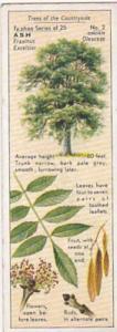 Typhoo Tea Vintage Trade Card Trees Of The Countryside 1936 No 2 Ash