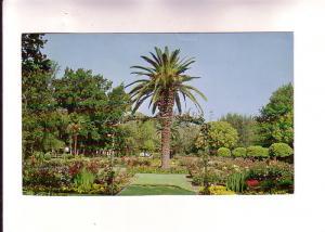 McKinley Park, Sacramento, California