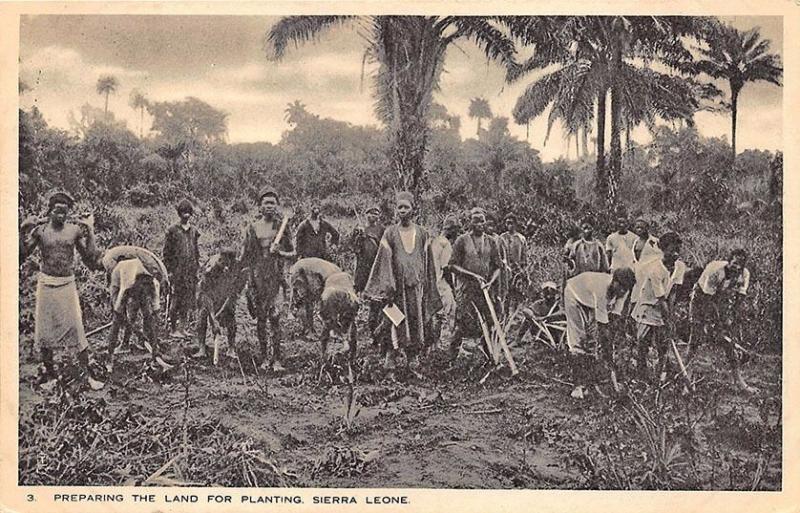 Sierra Leone Preparing The Land Planting Raphael Tuck Postcard