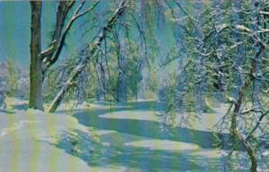 Canada Terra Cotta Inn Winter Scene Terra Cotta Ontario