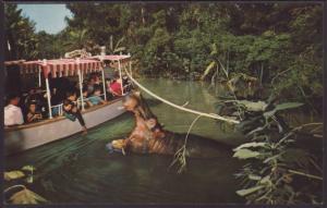 Explorer's Boat,Disneyland Postcard