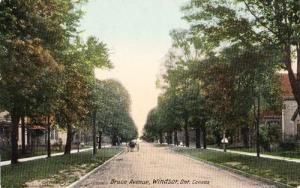 Bruce Avenue Windsor Ontario Antique Canada Canadian Postcard