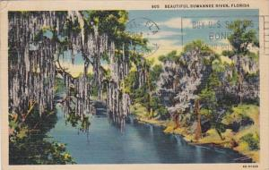 Florida Beautiful Suwannee River Scene 1936 Curteich