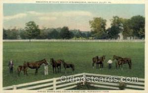 Ralph Bever Strassburger Residence Old Vintage Antique Postcard Post Card Gny...