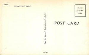 DOWNIEVILLE, CA Bird's Eye View of Town Sierra County California c1960s Postcard