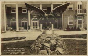 Monteagle TN Hotel & Eagle Statue Route 41 c1920s Real Photo Postcard