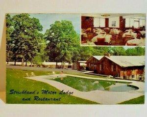 Vintage Postcard Strickland's Motor Lodge Waterloo Baltimore Maryland 1963