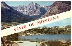USA, State of Montana, unused Postcard