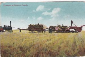 Threshing in Western Canada , 1900-10s