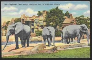 Elephants The Chicago Zoological Park Brookfield  Illinois Unused c1941