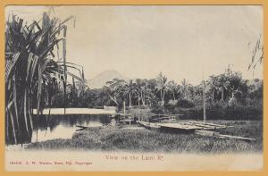 Suva, Fiji, View on the Lami River - 1909
