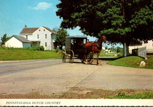 Pennsylvania Amish Country Amish Family Carriage 1972