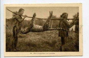 424032 VIETNAM panther leopard hunting Vintage SAIGON postcard