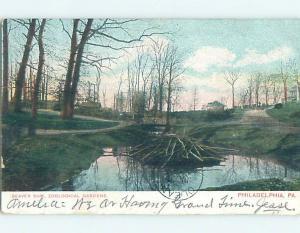 Pre-1907 BEAVER DAM AT ZOOLOGICAL GARDEN Philadelphia Pennsylvania PA A1388