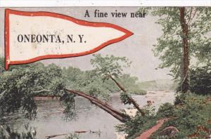 New York Oneonta A Fine View 1917 Pennant Series