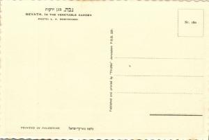 israel palestine, GVAT גבת, Kibbutz, Vegetable Garden 1930s Tmunia Postcard 180