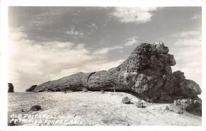 D32/ Petrified Forest Arizona Az Real Photo RPPC Postcard c40s Old Faithful