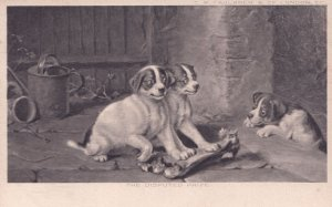 The Disputed Prize Dog & Bone Hunting Eating Antique Postcard