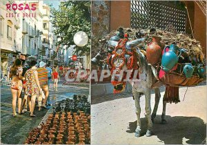 Postcard Modern Roses Costa Brava 1165 typical pottery Donkey Donkey