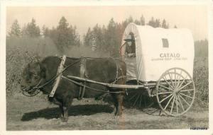 1940s Catalo Grandview Ranch Colville Washington RPPC real photo postcard 9068