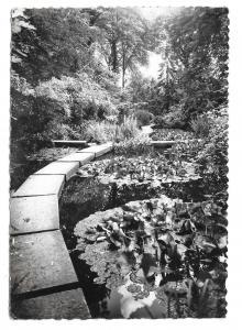 France Sevres Japanese Garden Language School CIEP Glossy Photo Postcard 4X6