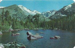 Bear Lake Longs Peak Glacier Gorge Rocky Mtn. Nat'l Park, CO. Vintage Postcard