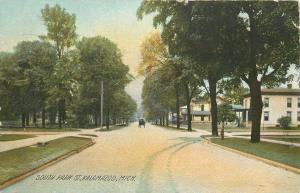 Kalamazoo Michigan~Homes on South Park St~Horse & Buggy~1908 Postcard