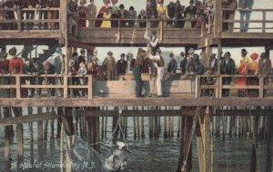 ATLANTIC CITY, New Jersey, PU-1907; A Haul, People Fishing