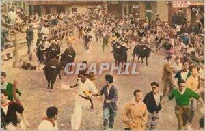 Postcard Modern Pamplona Corriendo Mozos Toros y por la Calle Tauteaux