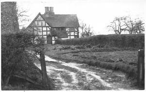 House Maison Trees Postcard