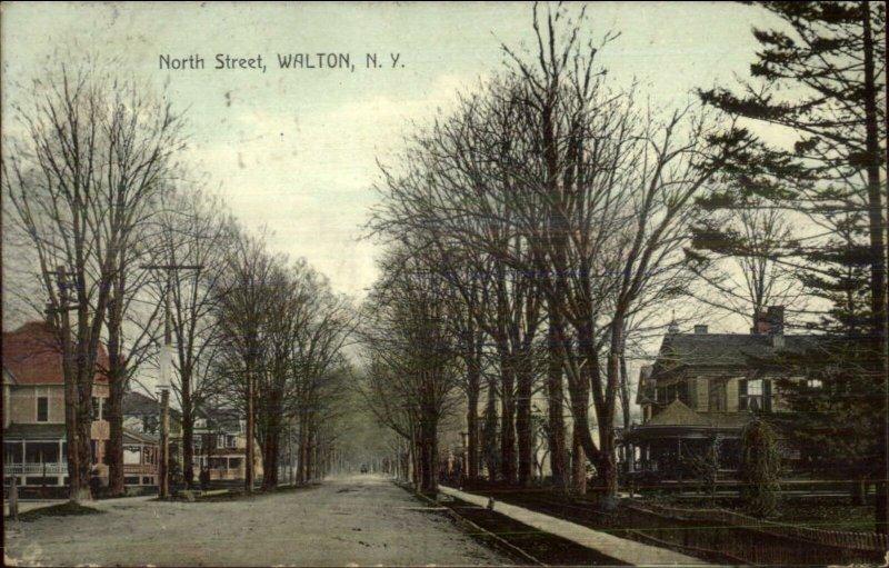 Walton NY North St. c1910 Postcard