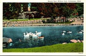 Michigan Kalamazoo Milham Park Beauty Spot Lake With Swans Curteich