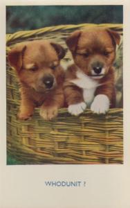 Whodunnit Dog Detective Dogs Comic Postcard
