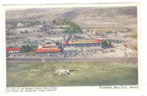 Air View Of The Famous Caliente Race Track, Tijuana, Baja California, Mexico,...