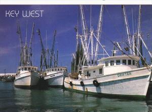 Shrimp Boats Key West Florida