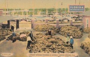 TARPON SPRINGS, Florida, 1930-40s; Largest Sponge Fisheries in World