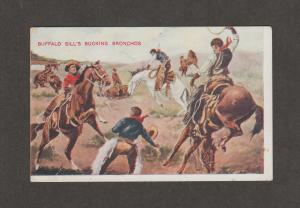 Buffalo Bill's Bucking Bronchos Postcard Vintage Horses Rodeo