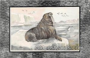 Walrus Unused