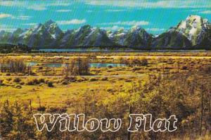 Wyoming View Of Grand Teton National Park Willow Flat