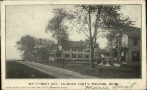 Madison CT Waterbury Ave South 1908 Used Postcard