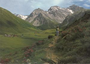 Switzerland, Suisse, Davos Serting-Dorfli, unused Postcard