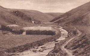 Badgeworthy Water and Doone Valley, Devon, England, United Kingdom, 00-10s