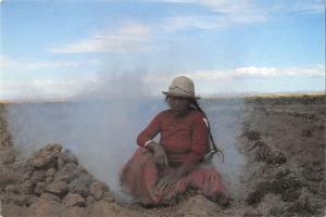 BR99371 woman of kollana bolivia altiplano baking potatoes types folklore