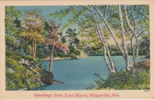 Wisconsin Briggsville Greetings From Lake Mason