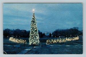 Ohio Christmas Trees, President's Park White House Chrome Washington DC Postcard