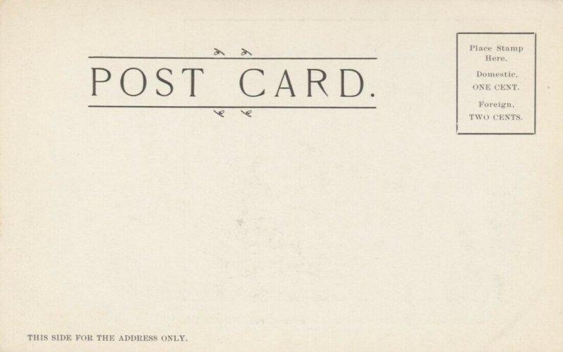 WINNIPEG , Manitoba , Canada , 1906 ; Business Street