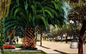 California Los Angeles St James Park 1917
