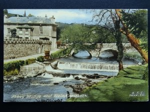 Devon TAVISTOCK Abbey Bridge & Weir (1) c1905 Postcard by Frith