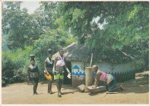 Zulu Women African Postcard